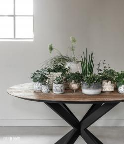 Timeless Collection - Shape dining table